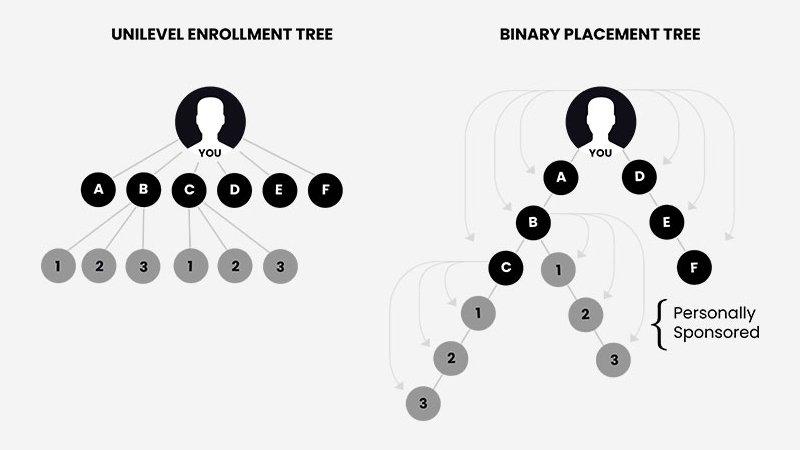 二进制MLM脚本中的赞助树