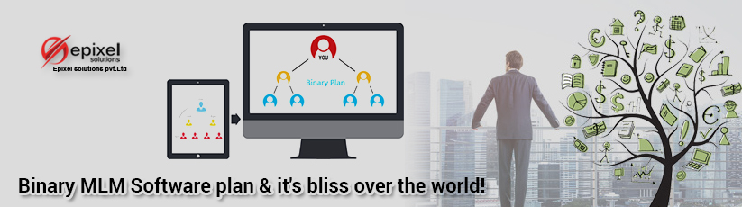 Binary MLM Software plan & it's bliss over the world