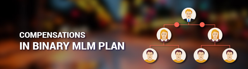 Binary mlm plan