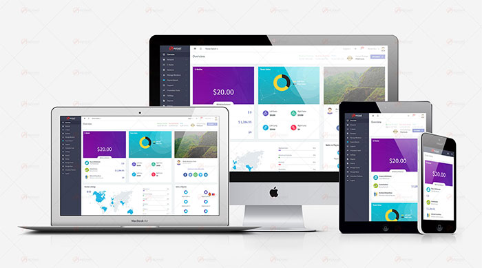 Epixel MLM Software Version-14 - 2019