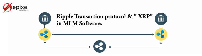 Ripple Transaction protocol and XRP in Network Marketing System